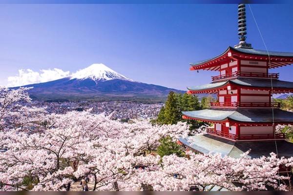 Japan - حمل و نقل بین المللی به کشورهای خاور دور
